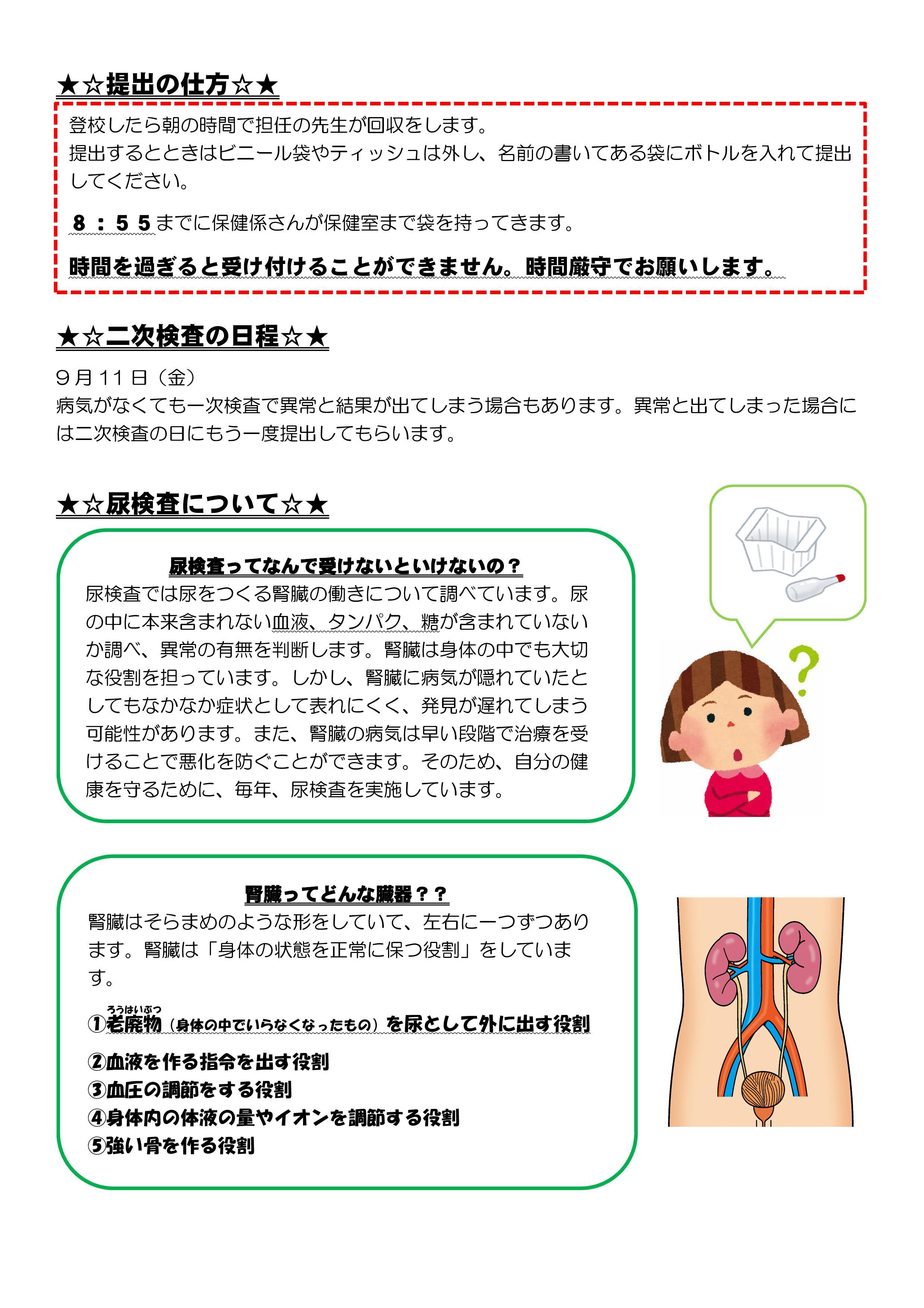 ない 尿 検査 出